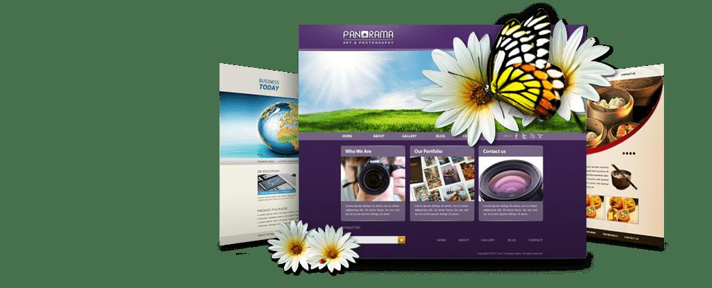 Shazam Web Design